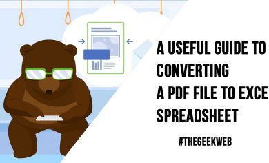 A Useful Guide to Converting a PDF File to Excel Spreadsheet